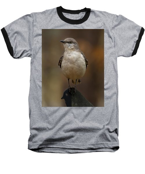 Northern Mockingbird Baseball T-Shirt