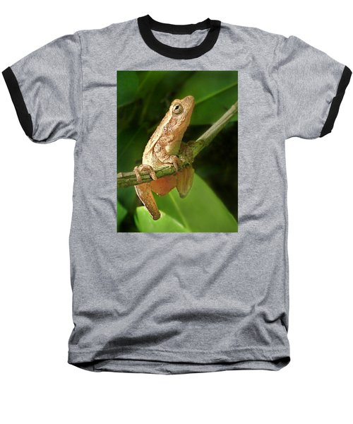Northern Spring Peeper Baseball T-Shirt by William Tanneberger
