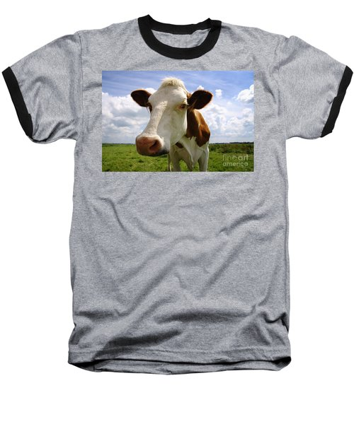 Nosy Cow Baseball T-Shirt