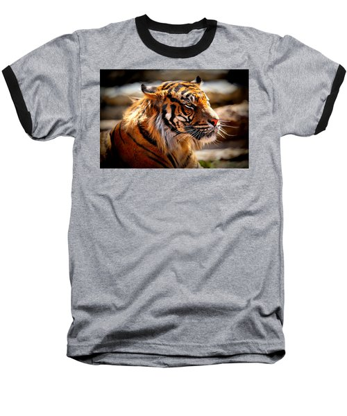 Not A Tigger Baseball T-Shirt