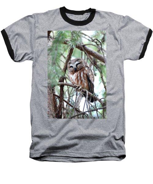 Northern Saw-whet Owl 2 Baseball T-Shirt