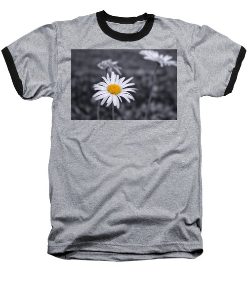 November Daisy Baseball T-Shirt by Brian Caldwell