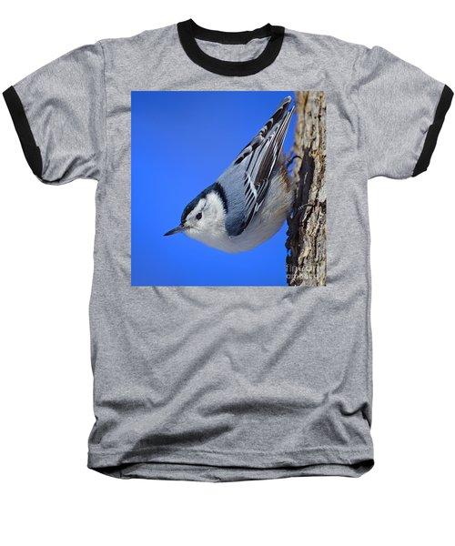 Nuthatch Baseball T-Shirt