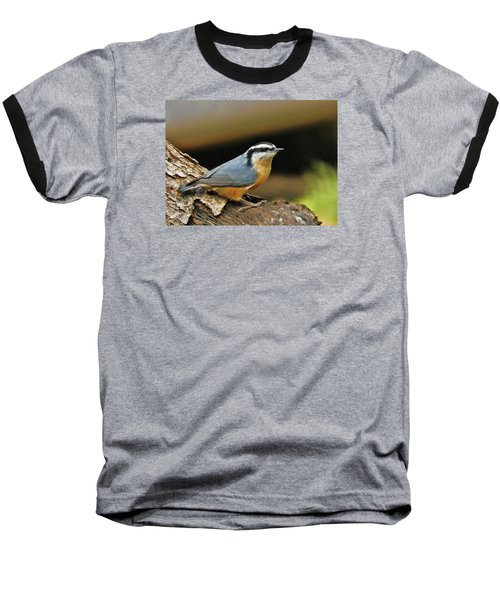 Nuthatch Pose Baseball T-Shirt