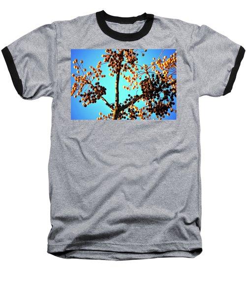 Baseball T-Shirt featuring the photograph Nuts And Berries by Matt Harang