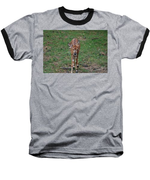 Nyala Baseball T-Shirt by DejaVu Designs