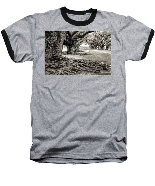 Oak Alley Baseball T-Shirt by William Beuther
