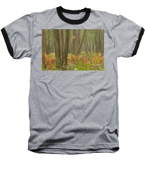 Oak Openings Fog Forest Baseball T-Shirt