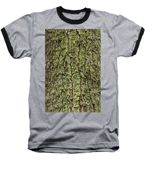 Oak With Lichen Baseball T-Shirt