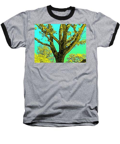 Oaks 3 Baseball T-Shirt by Pamela Cooper