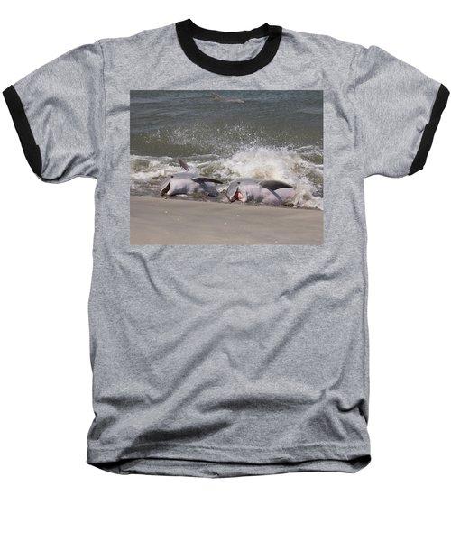 Observing Calf Baseball T-Shirt