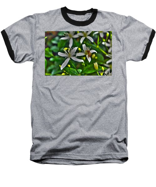 Odd Beauty Baseball T-Shirt