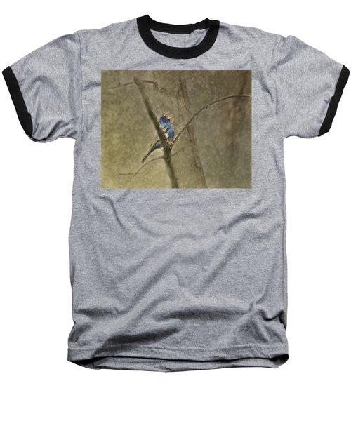 Ode To Spring Baseball T-Shirt