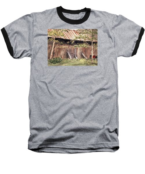 Old Barn Door Baseball T-Shirt by Christine Lathrop