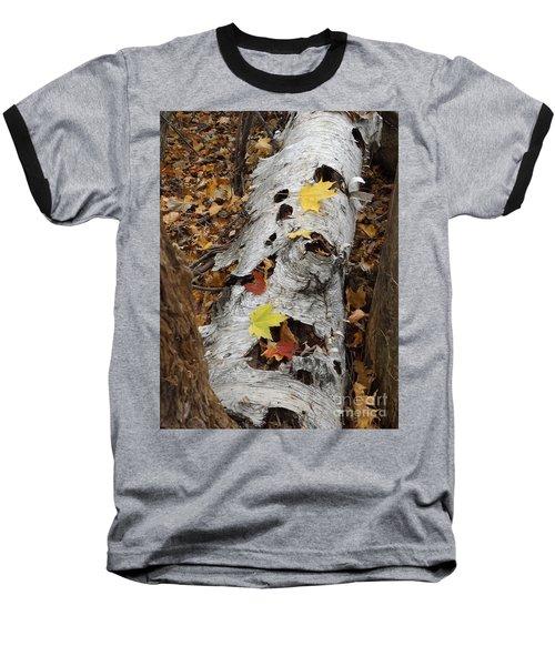 Old Fallen Birch Baseball T-Shirt