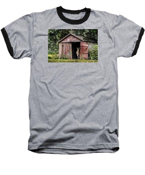 Old Gray Mare Baseball T-Shirt