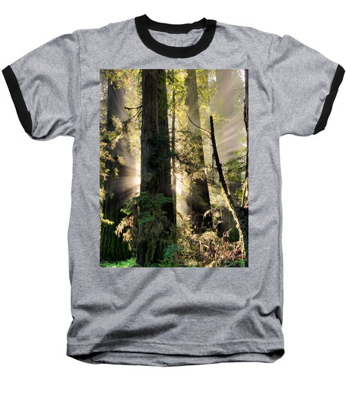 Old Growth Forest Light Baseball T-Shirt