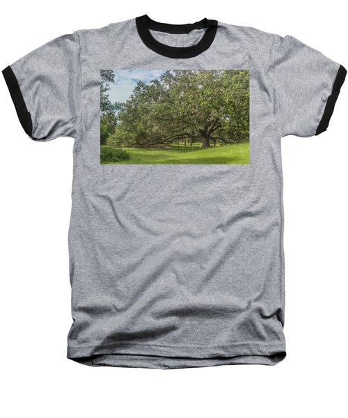 Baseball T-Shirt featuring the photograph Old Oak Tree by Jane Luxton