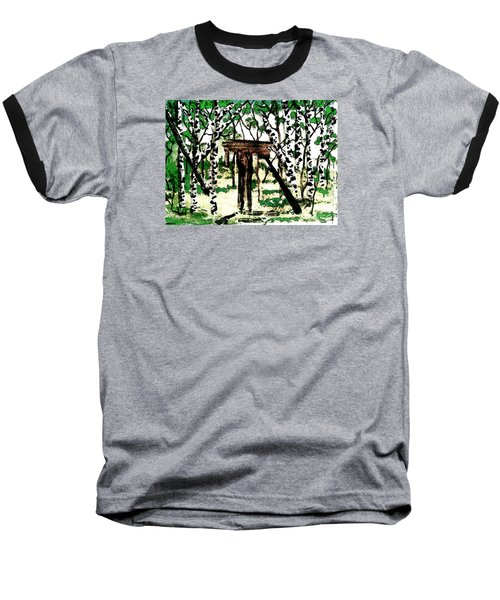 Old Obstacles Baseball T-Shirt by Denise Tomasura