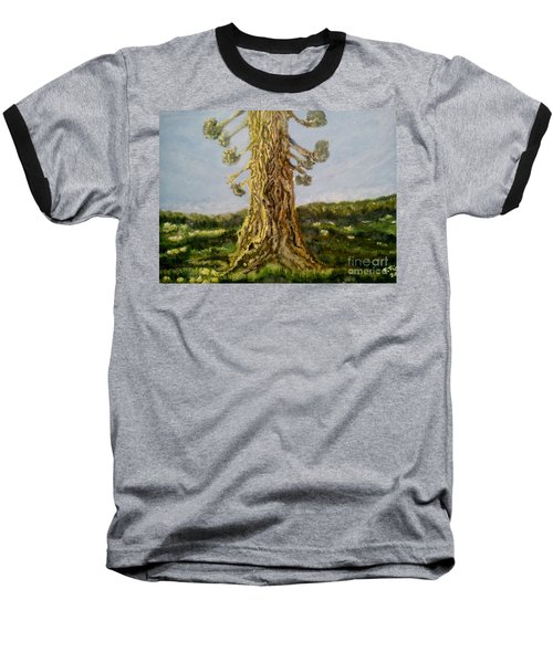 Old Tree In Spring Light Baseball T-Shirt by Felicia Tica