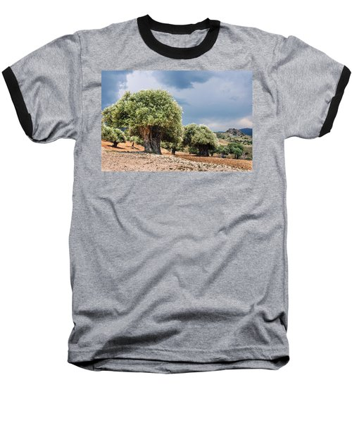 Olive Grove Baseball T-Shirt