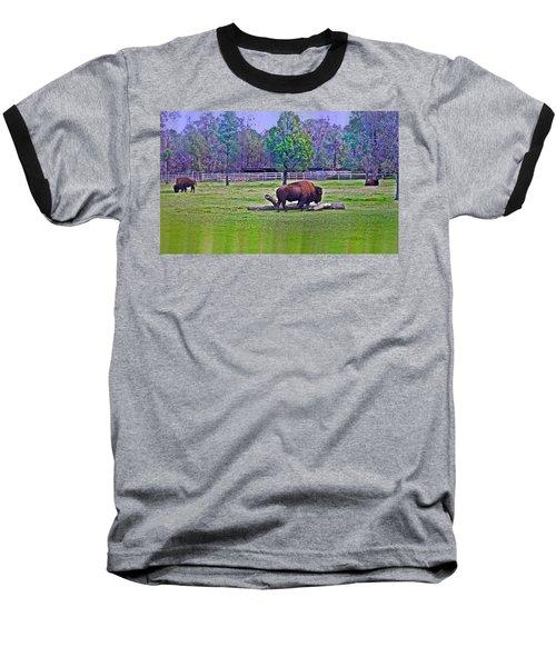 One Bison Family Baseball T-Shirt