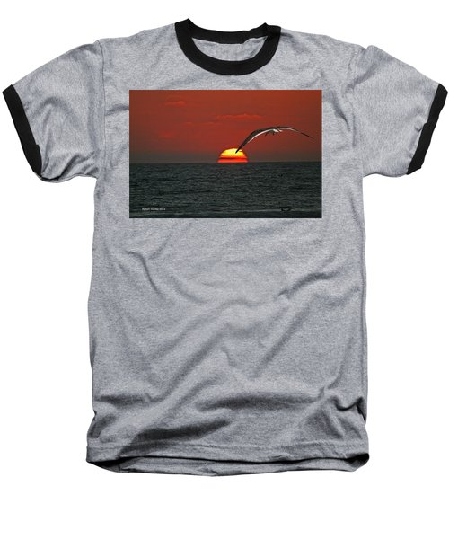 Baseball T-Shirt featuring the photograph One Black Skimmers At Sunset by Tom Janca