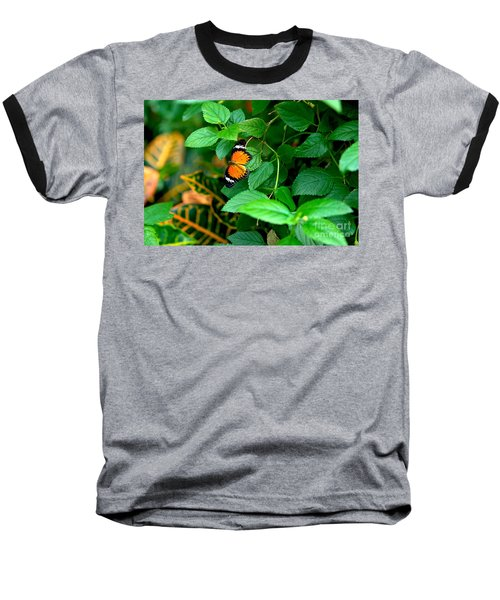 Orange Butterfly Baseball T-Shirt