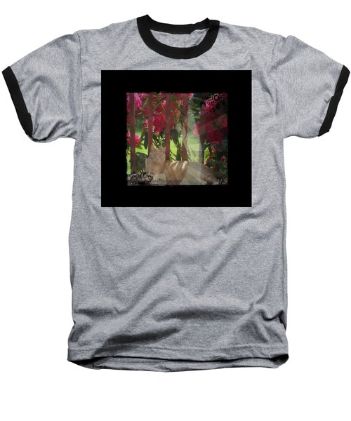Baseball T-Shirt featuring the photograph Orange Cat In The Shade by Absinthe Art By Michelle LeAnn Scott