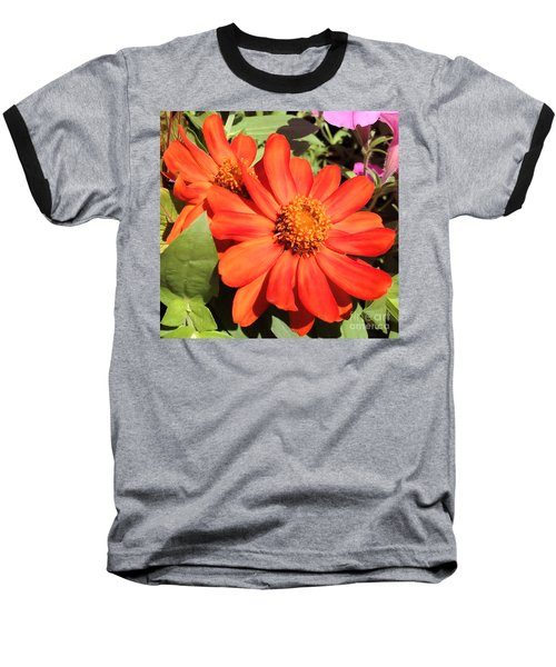 Baseball T-Shirt featuring the photograph Orange Daisy In Summer by Luther Fine Art