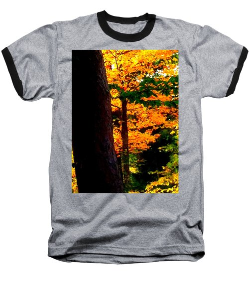 Orange Foliage Baseball T-Shirt by Denyse Duhaime