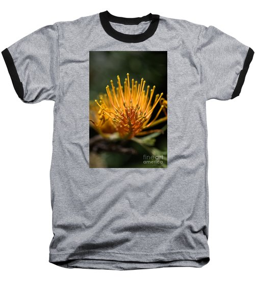 Orange Grevillea Baseball T-Shirt