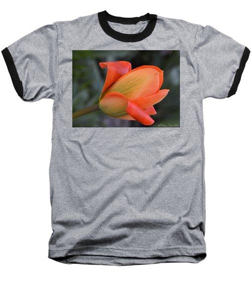 Orange Lady Baseball T-Shirt by Felicia Tica