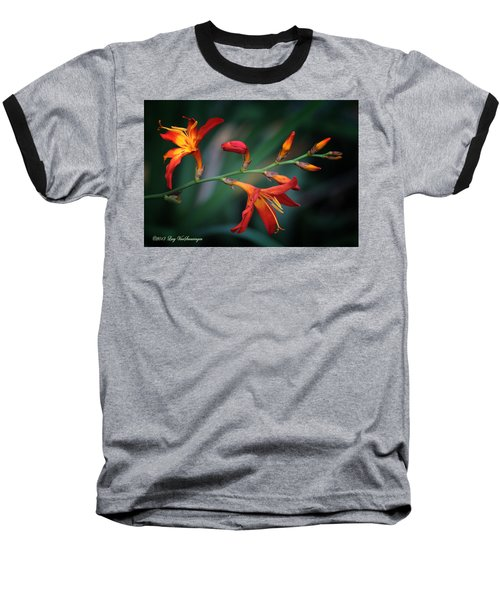 Orange Lily Baseball T-Shirt