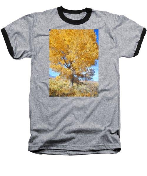 Baseball T-Shirt featuring the photograph Orange Serenade by Marilyn Diaz