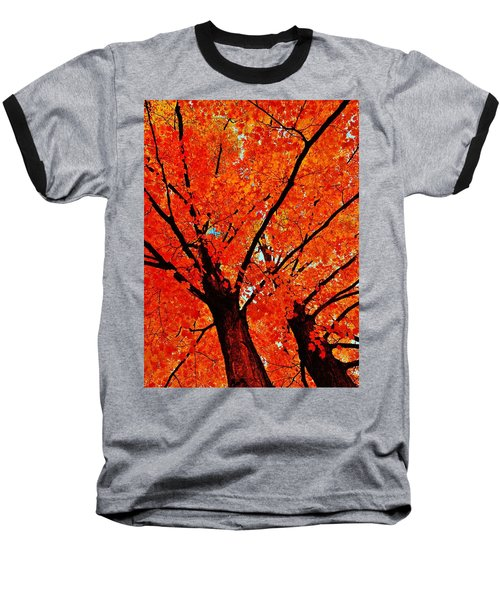 Orange...the New Green Baseball T-Shirt by Daniel Thompson