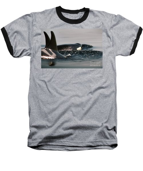 Baseball T-Shirt featuring the photograph Orcas/killer Whales Off The San Juan Islands 1986 by California Views Mr Pat Hathaway Archives