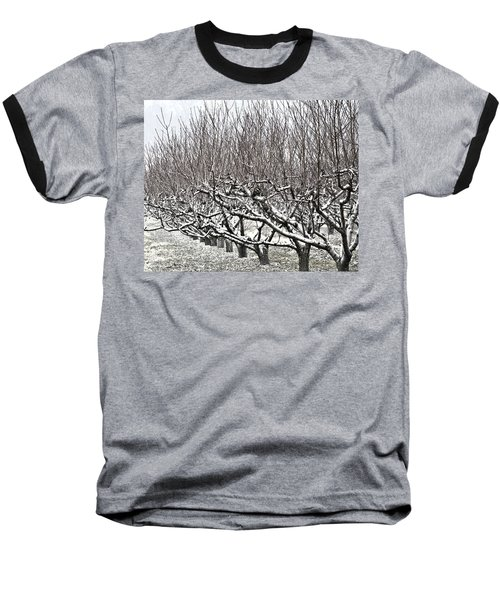Orchard In Winter Baseball T-Shirt