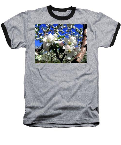 Orchard Ovation Baseball T-Shirt