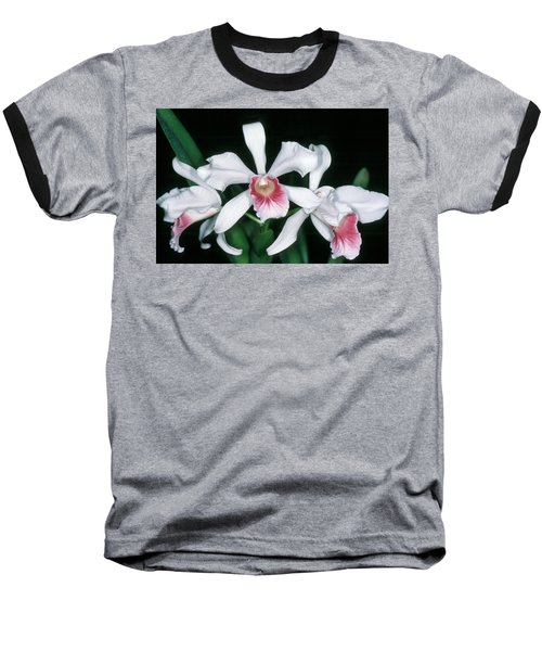 Orchid 10 Baseball T-Shirt by Andy Shomock