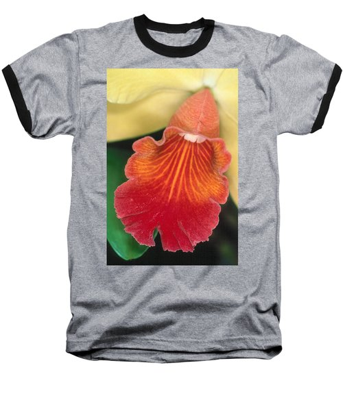 Orchid 16 Baseball T-Shirt by Andy Shomock
