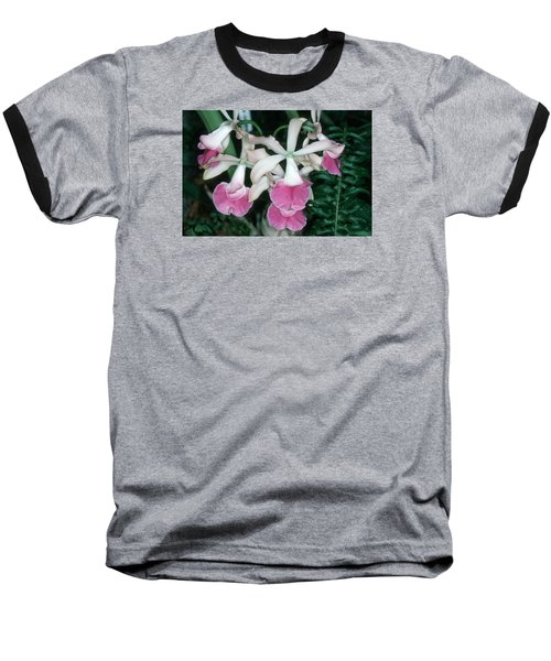 Orchid 17 Baseball T-Shirt by Andy Shomock