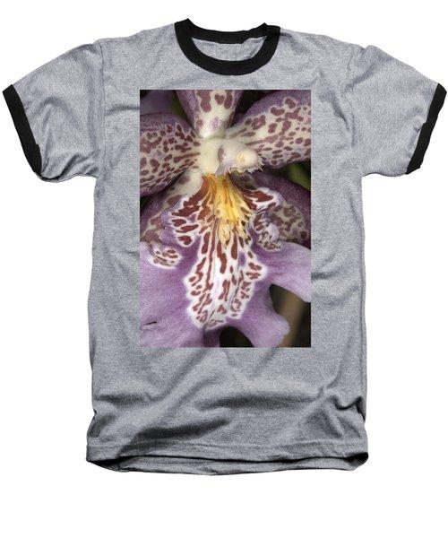 Orchid 483 Baseball T-Shirt