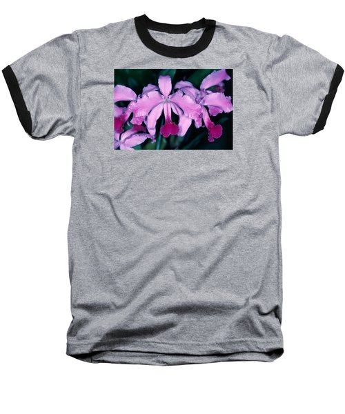 Orchid 6 Baseball T-Shirt by Andy Shomock