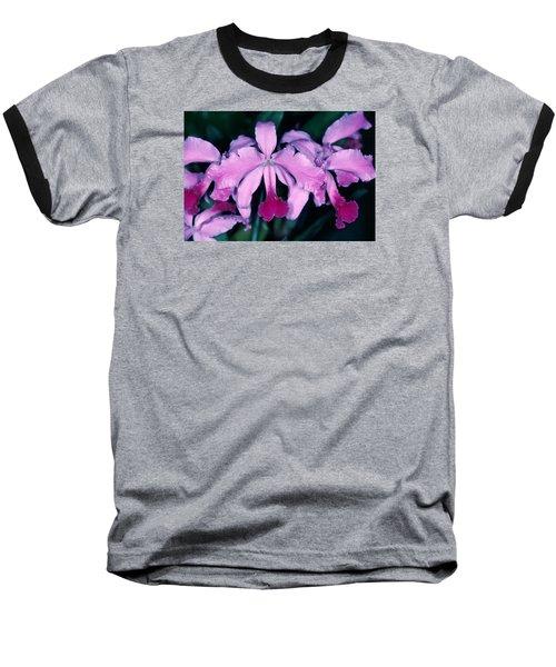 Orchid 6 Baseball T-Shirt