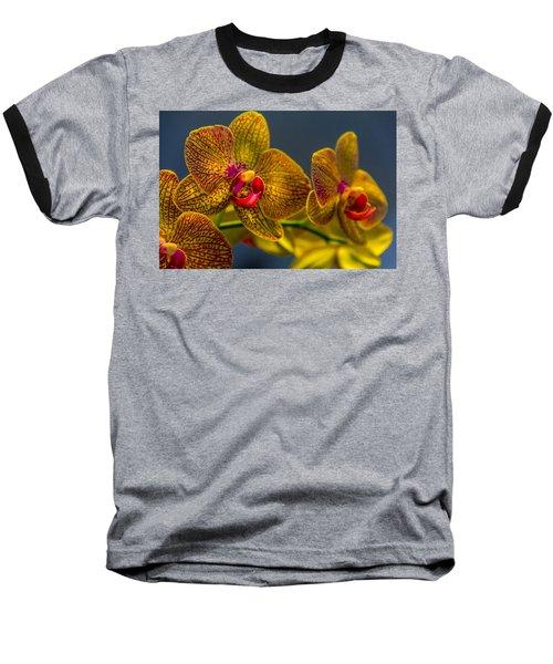 Orchid Color Baseball T-Shirt