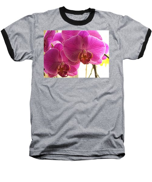 Baseball T-Shirt featuring the photograph Orchid by Lingfai Leung