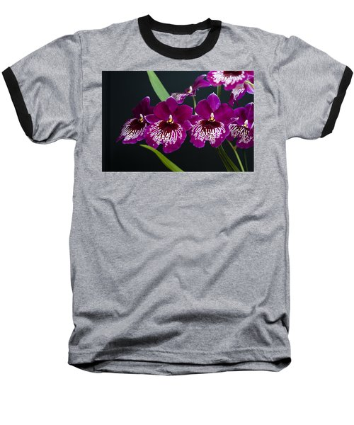 Baseball T-Shirt featuring the photograph Orchid Miltonia by Lana Enderle