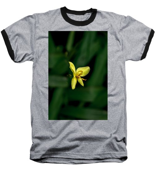 Orchid Suspense  Baseball T-Shirt