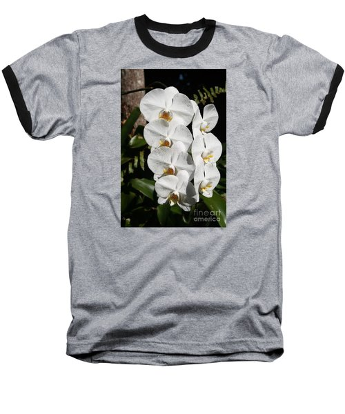 Orchids Anna Baseball T-Shirt by The Art of Alice Terrill